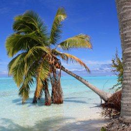 vladimir-nardin-oceania-aitutaki-beach-1